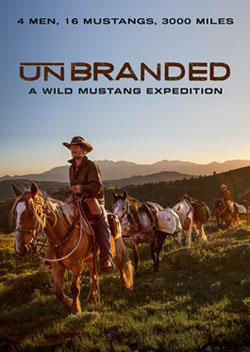 Unbranded poster_250